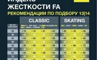 Подбор лыж фишер по fa. Лыжи Fischer: структуры и базы