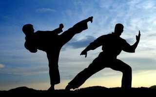 Олимпийские виды единоборств перечень. Боевые искусства