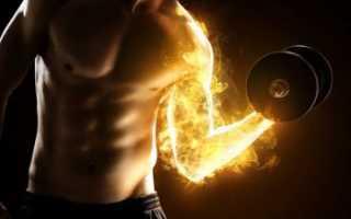 Как выводить молочную кислоту из мышц после тренировок. Почему накапливается молочная кислота в мышцах