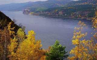 Животные и растения реки Енисей: описание, список, фото. Ловля рыбы на енисее