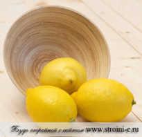 Лимон сжигает жиры. Правда ли? Вода Сасси: лимон сжигает жир