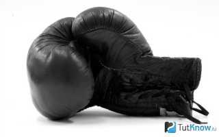 Можно ли заниматься боксом каждый день? Почему новички быстро уходят из секции бокса