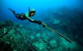 Подводная охота для начинающих. Основы подводной охоты. Что представляет собой подводная охота