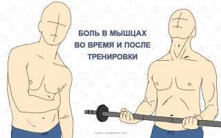 Почему горят мышцы после тренировки? Жжение в мышцах: причины, лечение и профилактика