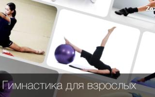 Как заниматься гимнастикой дома для начинающих. Гимнастика в домашних условиях