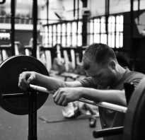 Работа мышц в тренажерном зале. Как правильно распределить нагрузку на все группы мышц? Наиболее частые ошибки в тренажёрном зале