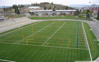 Отличия регби от американского футбола. В чём отличие между американским футболом и регби? Стандартные положения регби