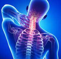 Упражнения на растяжение шейного отдела позвоночника. Короткая шея не приговор: как удлинить шею