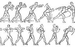 Упражнения для общей физической подготовки, их назначение. «6 комплексов упражнений по общей физической подготовке на занятиях