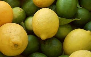 Лимон от жира. Как лимон сжигает жиры