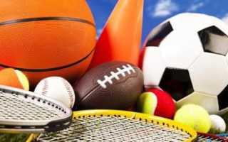 Всемирные студенческие спортивные игры универсиады. Что такое универсиада? Построят город спорта