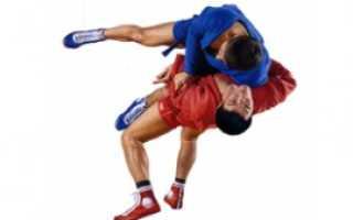 Чем отличается спортивное самбо от боевого: особенности и отличия. Чем отличаются виды боевых искусств друг от друга