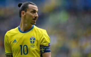 Какой национальности златан ибрагимович. Златан Ибрагимович (Zlatan Ibrahimović): биография и личная жизнь футболиста (фото)