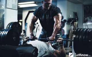 Сокращенный тренинг — личный опыт. Сокращенные тренировки. Сила, масса и частота тренировок