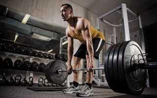 Что одеть в зал. Что одеть в тренажерный зал мужчине для бега, велотрека, штанги? Спортивная одежда в спортзал советы по выбору
