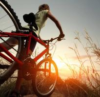 10 км на велосипеде сколько калорий сжигается. Сколько калорий сжигает велосипед