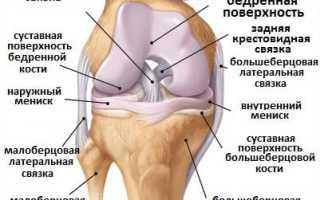 Как сделать колени красивыми, уход и упражнения. Как укрепить коленный сустав