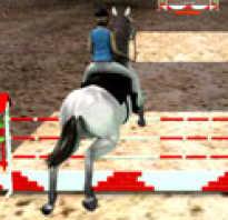 Игры приют для лошадей. Игры про лошадей