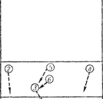 Техника блокирования в волейболе. Как правильно блокировать удары