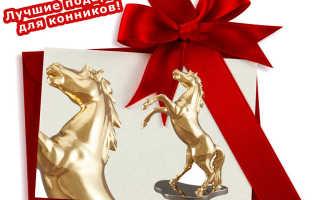 Что подарить человеку увлекающемуся лошадьми. Подарок подруге, увлекающейся играми и конным спортом. Абонемент на прокат или обучение на лошадях