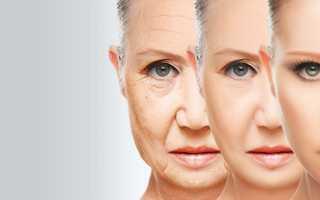 Лицо человека схема анатомия. Мышцы лица, их функции, анатомия строения лица. Что собой представляют мимические кожные складки