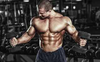 Упражнения для развития силы мышц рук. Сильные руки: упражнения
