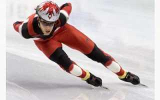 Как называется спорт бег на коньках. Какая максимальная скорость конькобежцев на треке? Мифы и реальность