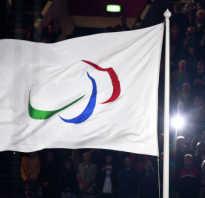 Паралимпийские игры. История и виды спорта. Справка. Краткая история параолимпийских игр