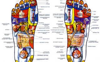 Что сделать чтобы не болела нога. Чтобы ноги не болели. Несложные упражнения для усталых ног. Заболевания мышц, приводящие к боли в ногах