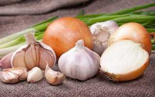 Как хранить чеснок и лук в домашних условиях. Как правильно хранить лук и чеснок зимой