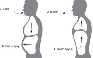 Женское дыхание животом. Учимся дышать животом как профессионал