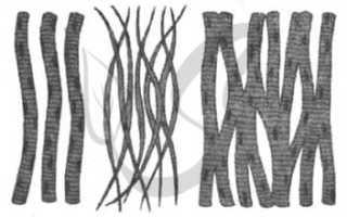 На рисунке изображены виды ткани