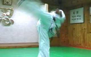Удар ногой с разворота в прыжке. Как научиться выполнять удар ногой