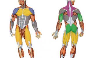 Напряжены мышцы ног как расслабить. Как можно расслабить мышцы ног? Напряжение в мышцах
