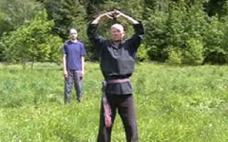 Волновая гимнастика круги и восьмерки. Волновая гимнастика – спонтанный танец. Лечение и удовольствие