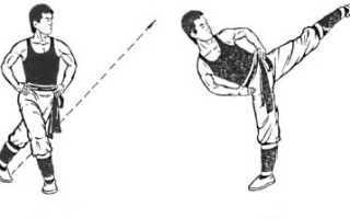Развитие силы ног для нанесения ударов. Тренировка ударов ногами, виды ударов и растяжка