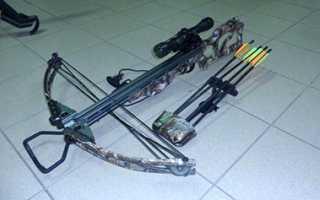 Как называется лук из которого стреляют. Техника стрельбы на классике. Что такое лук