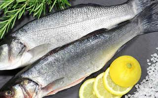 Морской окунь вес 1 рыбы. Морской окунь: польза и вред