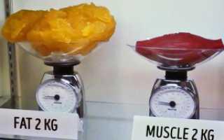 Сухие мышцы. Жир или мышцы — что тяжелее в теле человека