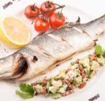 Сибас жирная рыба. Рыба сибас: калорийность, полезные свойства, приготовление и особенности