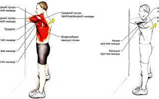 Что делать при болях в мышцах спины. Что делать, если болят мышцы спины: возможные причины и лечение. Почему болят мышцы спины и как решить эту проблему: советы врача