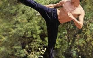 Откуда была сила брюса ли. Джеки Чан – подражатель Брюса Ли или самостоятельно сформировавшийся актер? Мистика или наказание за нарушение