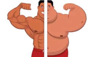 Как жировую массу превратить в мышечную. Перегоняем жир в мышцы