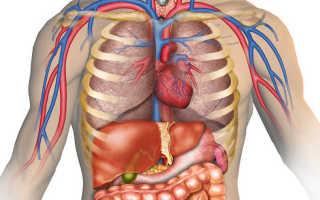 Лечебная физкультура для укрепления передней стенки живота. Упражнения для укрепления передней брюшной стенки