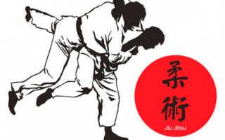 Палка для самообороны. Японские боевые искусства. Виды боевых искусств Японии