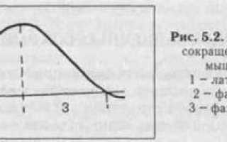 Изотонический и изометрический режимы сокращения. Виды мышечного сокращения. Изотоническое. Краткий словарь используемых терминов