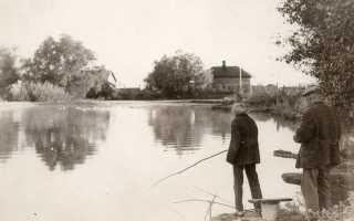 Чем можно глушить рыбу в пруду. Значение «глушение рыбы. Пешня бывает полезнее удочки