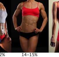 Жировая масса тела норма в кг. Какой нормальный процент жира в организме для здоровья? Измерение толщины кожной складки